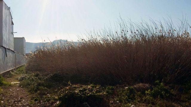 C's exige al PP una limpieza inmediata de los solares abandonados que degradan muchas zonas del sur de Murcia desde hace años - 5, Foto 5