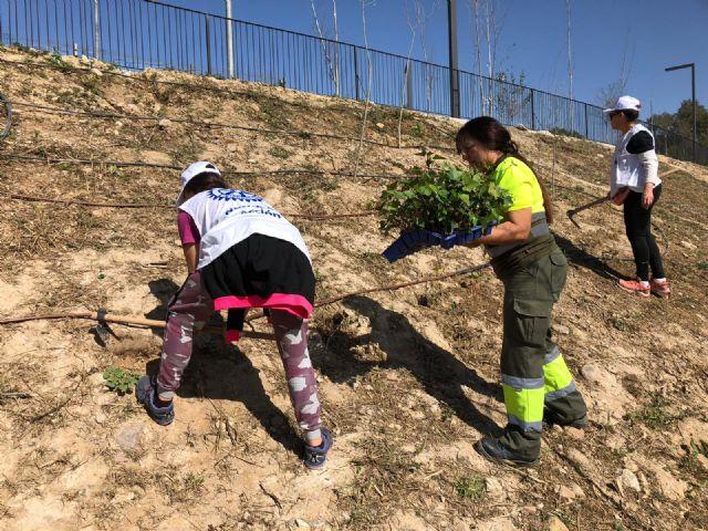 El Plan Foresta llena de ejemplares autóctonos el entorno de Murcia Río - 4, Foto 4