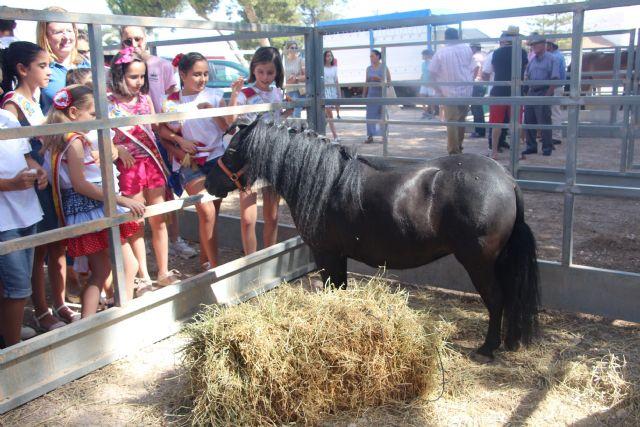 San Pedro del Pinatar celebra la CCXXIII Real Feria de Ganado de la localidad - 3, Foto 3