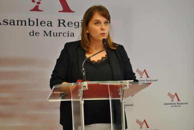 El PSOE advierte de que sin protección del medio ambiente, no mejorará la economía, Foto 1