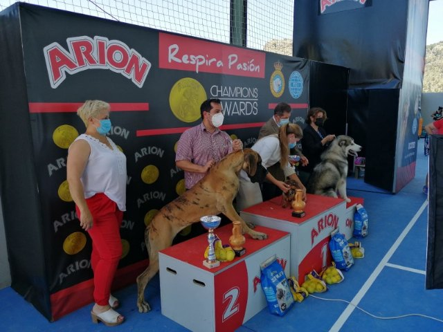 Exposición canina nacional de Ricote 2021 - 1, Foto 1