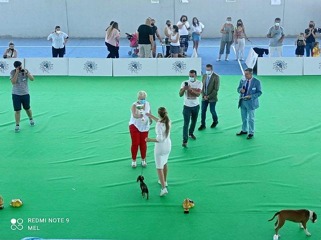 Exposición canina nacional de Ricote 2021 - 2, Foto 2
