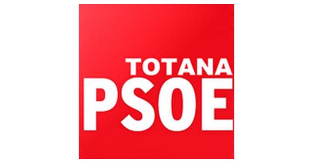 El PSOE pide responsabilidades tras las declaraciones del Equipo de Gobierno - 1, Foto 1