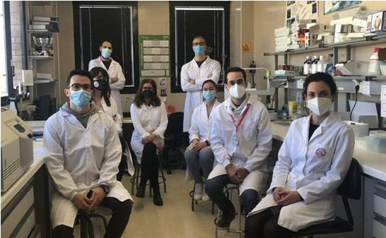 Científicos de la UMU descubren el mecanismo responsable de los procesos de alergia - 1, Foto 1