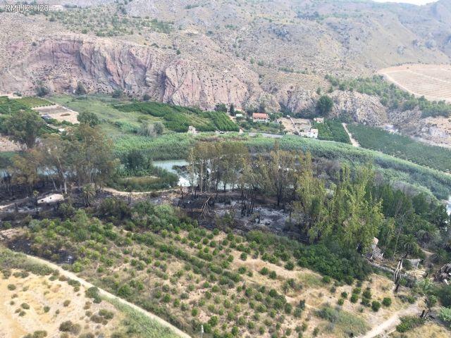 Controlado el incendio originado en el paraje de El Menjú, en Cieza, con cinco hectáreas afectadas - 2, Foto 2