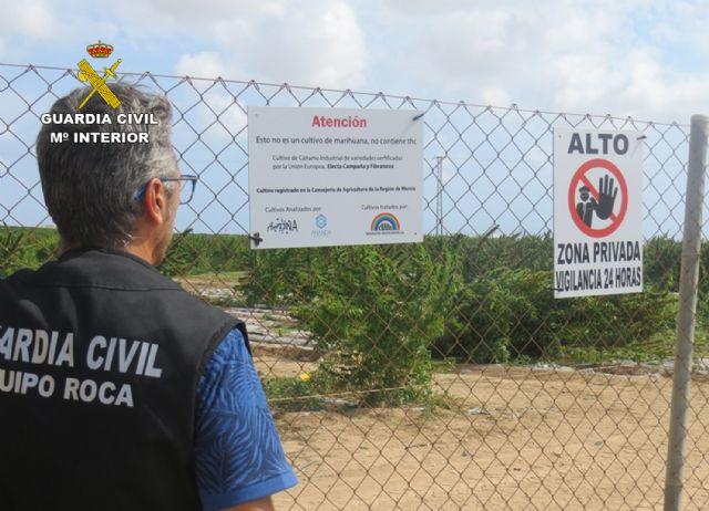 La Guardia Civil detiene a tres personas e investiga a otras ocho por cometer robos y daños en una finca de cáñamo - 2, Foto 2