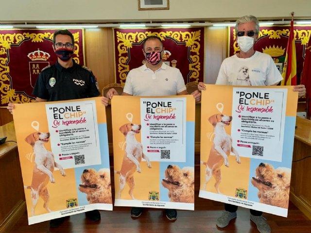 """La Concejalía de Bienestar Animal presenta la campaña """"Ponle el Chip"""" - 1, Foto 1"""