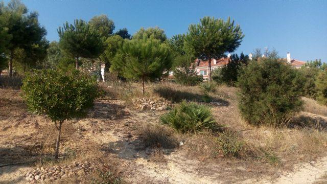 ANSE y el Ayuntamiento de Mazarrón ponen en marcha un curso para integrar la biodiversidad en centros educativos, Foto 1
