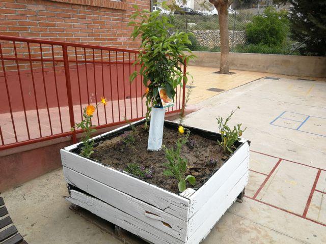 ANSE y el Ayuntamiento de Mazarrón ponen en marcha un curso para integrar la biodiversidad en centros educativos, Foto 2