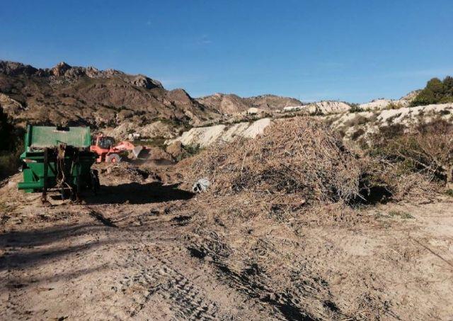 La CHS continúa con las obras de emergencia tras la DANA en los municipios de Lorquí, Archena y Ulea - 4, Foto 4