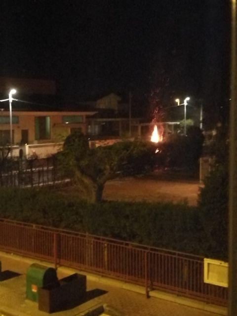 CCOO Enseñanza denuncia la desidia de las autoridades por su inacción ante los continuos incendios provocados en los alrededores del CEIP Antonio Delgado Dorrego - 2, Foto 2