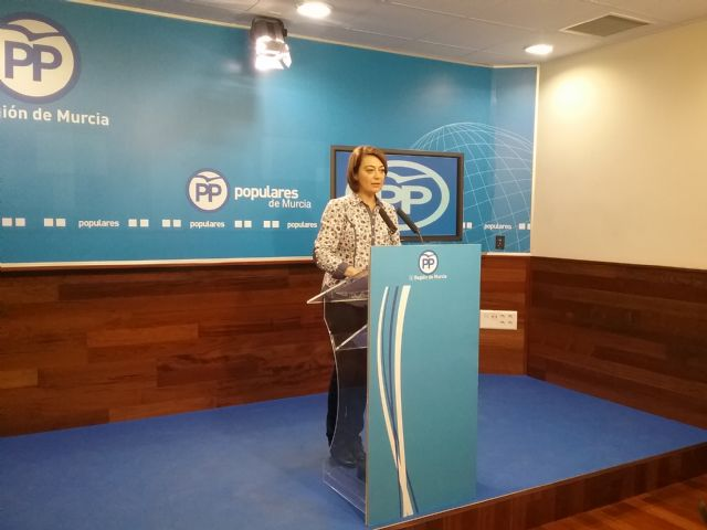 Severa González: Ciudadanos se ha equivocado al apoyar una enmienda que recorta en 3 millones el presupuesto a la educación concertada - 1, Foto 1