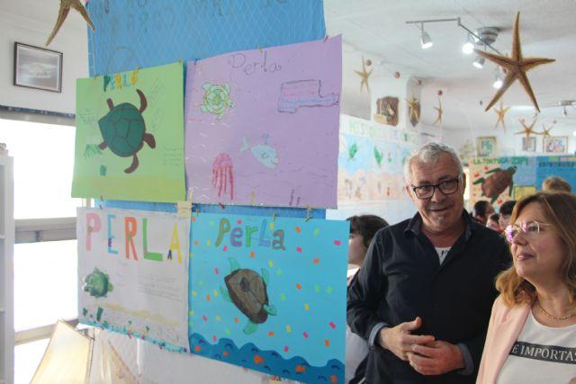 Los niños proponen diferentes nombres para la tortuga Boba del Museo del Mar - 1, Foto 1