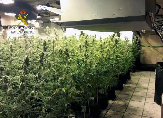 La Guardia Civil desmantela un invernadero intensivo con 900 plantas de marihuana en un chalet de Molina de Segura - 3, Foto 3