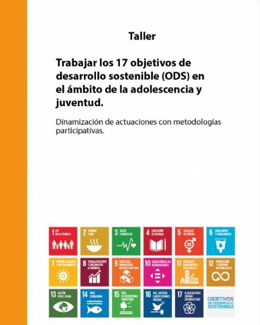 """Juventud colabora en la organización del Taller """"Trabajar los 17 objetivos de desarrollo sostenible (ODS) en el ámbito de la adolescencia y juventud"""", Foto 2"""