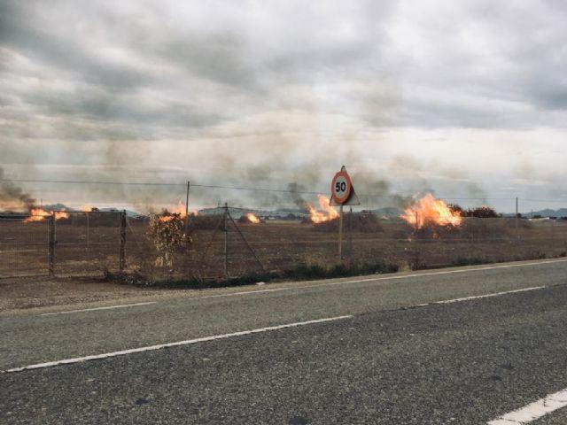 Ecologistas en Acción denuncia el incumpliendo de la Orden que prohíbe realizar quemas agrícolas durante el estado de alarma por covid-19 - 2, Foto 2