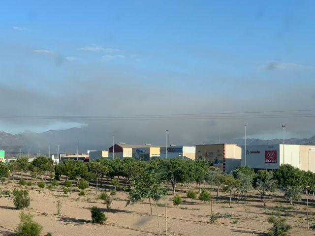 Ecologistas en Acción denuncia el incumpliendo de la Orden que prohíbe realizar quemas agrícolas durante el estado de alarma por covid-19 - 3, Foto 3