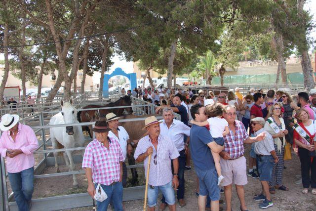 San Pedro celebra un año más su tradicional Real Feria de Ganado - 2, Foto 2
