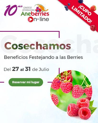Las Berries de México calientan motores para su primer Congreso On Line - 1, Foto 1