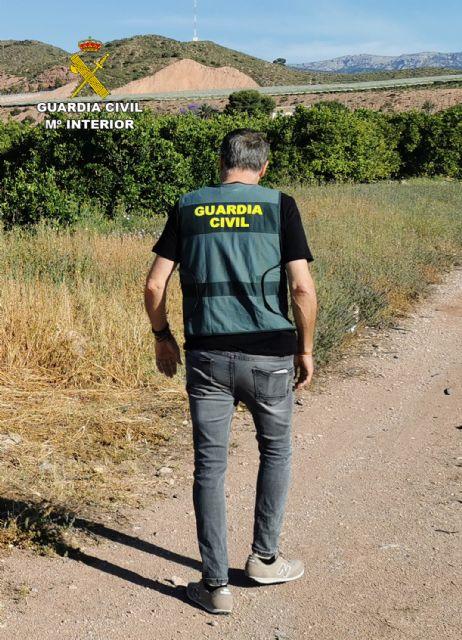 La Guardia Civil desmantela un grupo delictivo dedicado a la sustracción de cítricos en Alhama de Murcia, Foto 3