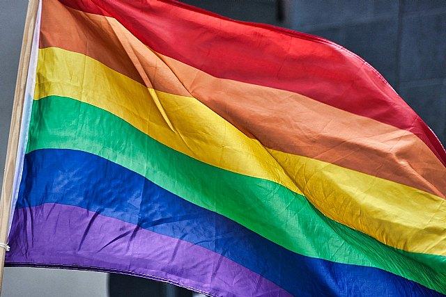 Exigien a las administraciones pública la retirada inmediata de las banderas arcoiris por incumplimiento de la ley de banderas - 1, Foto 1