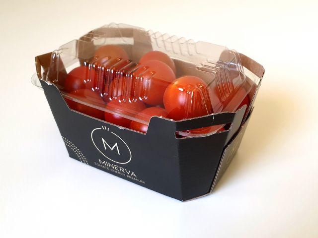 Looije presenta a Minerva, su nueva marca de tomate cherry - 1, Foto 1
