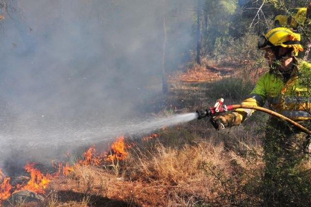 Agricultura mantendrá hasta septiembre el dispositivo Thader para prevenir incendios en el cauce del río Segura - 1, Foto 1