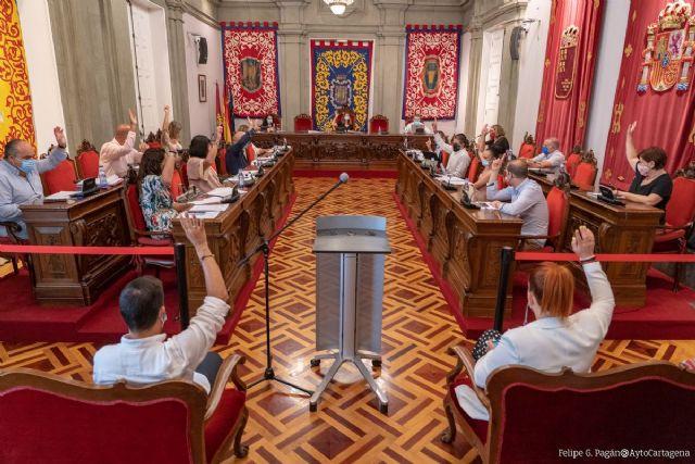 El pleno pide el cese del Delegado del Gobierno por su mala gestión de la crisis de la llegada de inmigrantes irregulares - 1, Foto 1