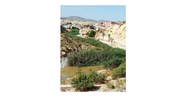 Ciudadanos solicita el acondicionamiento del cauce del río Mula - 1, Foto 1