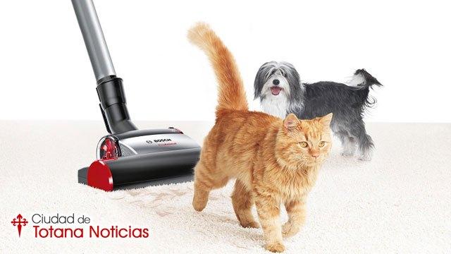 Los mejores productos para acabar con el pelo de las mascotas en casa