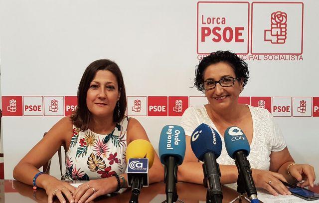 El PSOE solicita una serie de medidas que garanticen la igualdad de oportunidades a las personas con discapacidad en la próxima feria - 1, Foto 1