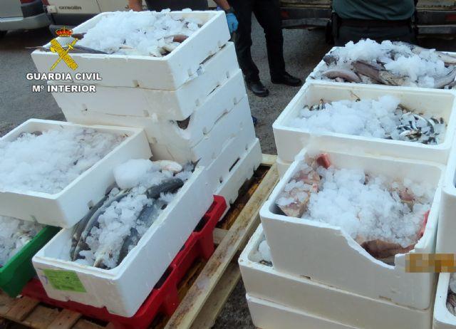 La Guardia Civil sorprende en Murcia a tres personas vendiendo gran cantidad de pescado de forma ambulante - 1, Foto 1