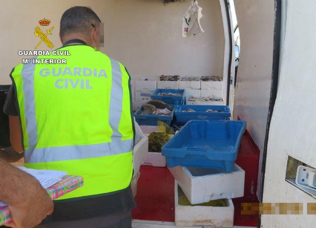 La Guardia Civil sorprende en Murcia a tres personas vendiendo gran cantidad de pescado de forma ambulante - 2, Foto 2