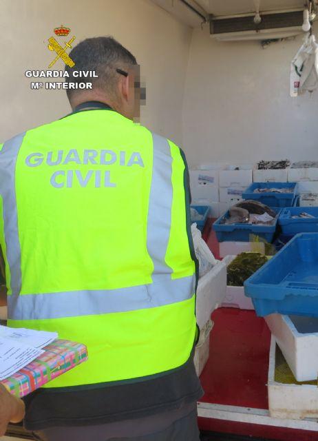 La Guardia Civil sorprende en Murcia a tres personas vendiendo gran cantidad de pescado de forma ambulante - 3, Foto 3