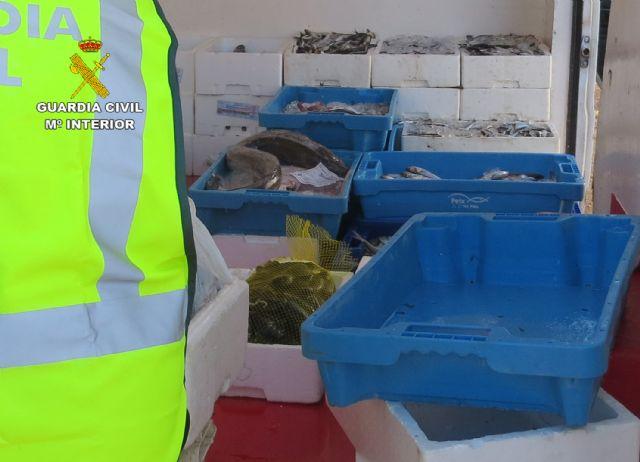 La Guardia Civil sorprende en Murcia a tres personas vendiendo gran cantidad de pescado de forma ambulante - 4, Foto 4