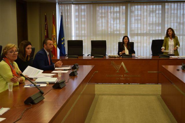 La Asamblea promueve una reforma legal que refuerce la vía penal para castigar los delitos por conducción bajo los efectos de las drogas - 1, Foto 1