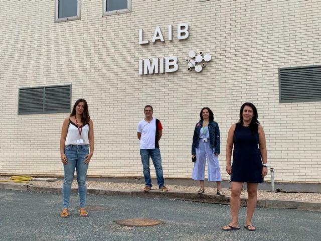 Investigadores de la UMU y el IMIB descubren un nuevo proceso implicado en la enfermedad rara Leucodistrofia hipomielinizante 14 - 1, Foto 1