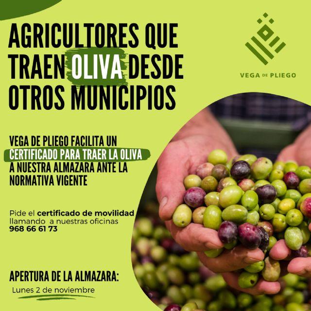 Vega de Pliego facilita certificados de movilidad a los agricultores que traen su oliva a su almazara - 1, Foto 1