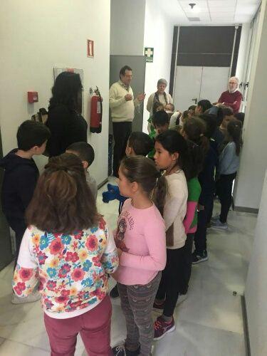 Alumnos del CEIP El Mirador visitaron el Ayuntamiento - 3, Foto 3