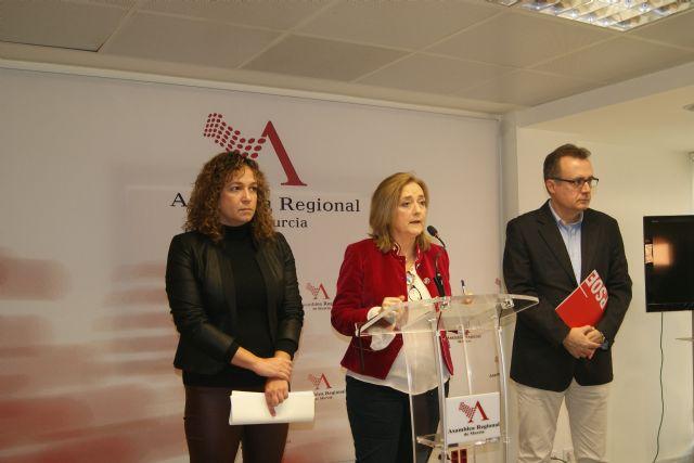 El PSOE considera los presupuestos de 2019 para Familia son continuistas y de una Consejería de cartón piedra y oropel - 1, Foto 1