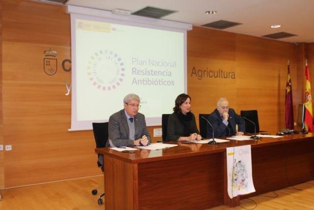 La Comunidad fomenta el uso prudente de antibióticos para evitar el desarrollo de resistencias - 1, Foto 1