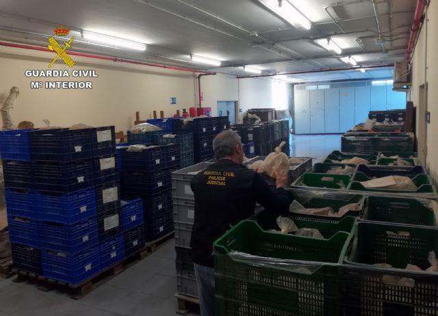La Guardia Civil recupera 80.000 piezas arqueológicas halladas en una nave industrial de Lorca - 4, Foto 4