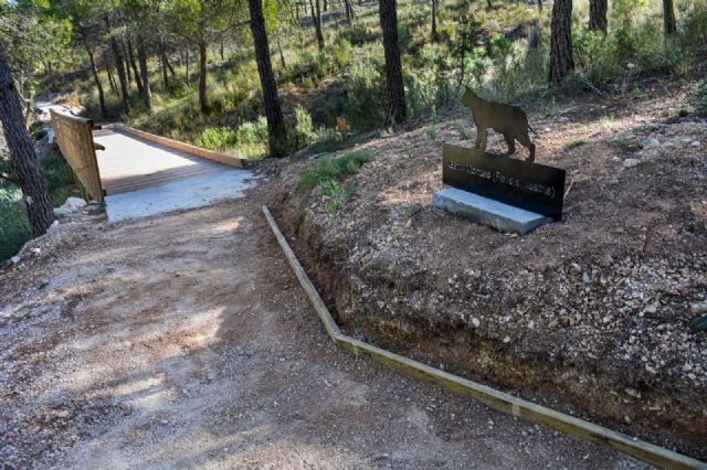 El ayuntamiento de Fortuna realiza mejoras en el área recreativa de Fuente la Higuera - 5, Foto 5
