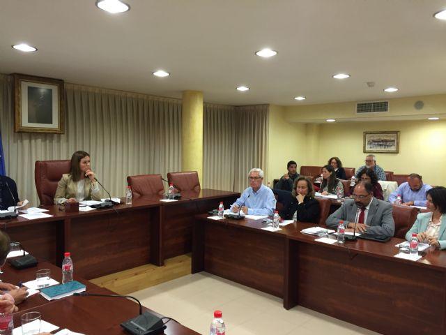 El PSOE solicita al Gobierno Regional que se aplique el presupuesto aprobado, prestando especial interés a las partidas destinadas a Águilas - 1, Foto 1