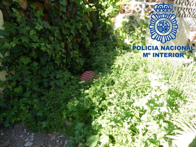 Detenidos un grupo de menores especializados en el robo con escalo en domicilios - 1, Foto 1