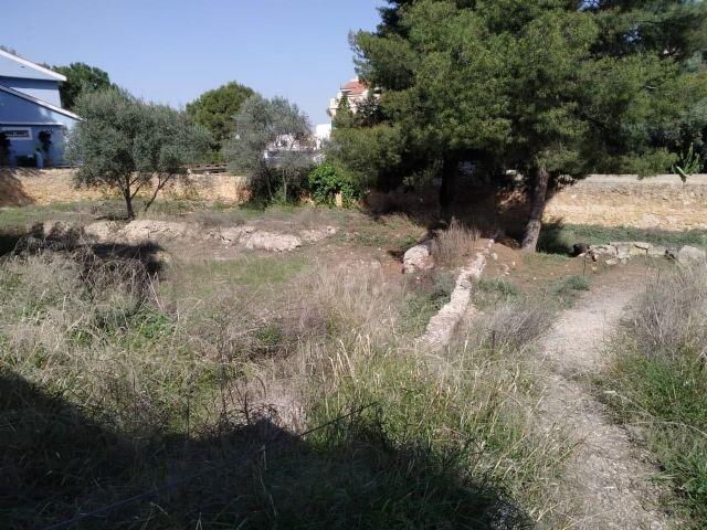 Huermur denuncia el vergonzoso estado del Martyrium y la Basílica de Algezares - 3, Foto 3