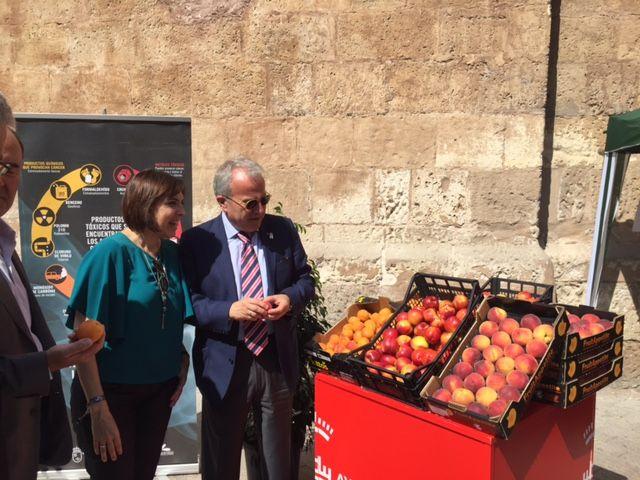 El Ayuntamiento de Murcia se suma al Día Mundial sin Tabaco - 2, Foto 2