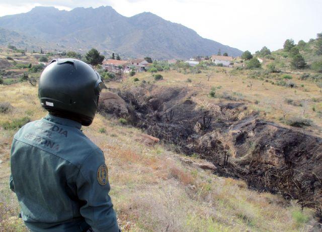 La Guardia Civil esclarece las causas del incendio que calcinó 4.000 metros cuadrados de terreno forestal - 3, Foto 3