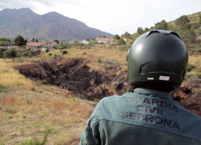 La Guardia Civil esclarece las causas del incendio que calcinó 4.000 metros cuadrados de terreno forestal - 4, Foto 4