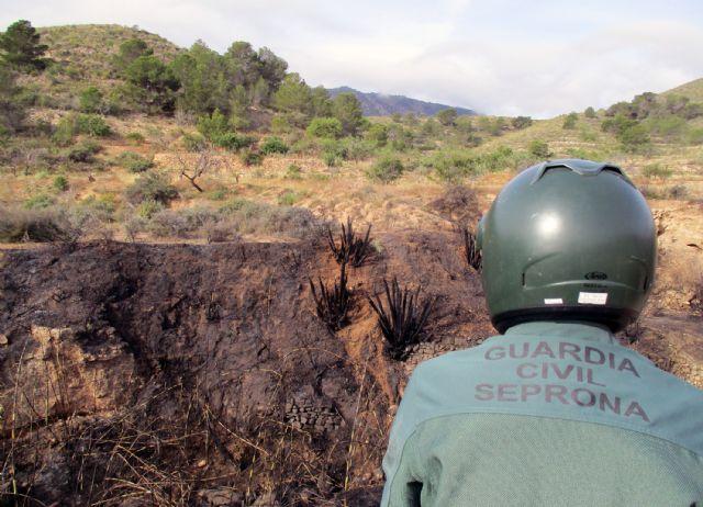 La Guardia Civil esclarece las causas del incendio que calcinó 4.000 metros cuadrados de terreno forestal - 5, Foto 5